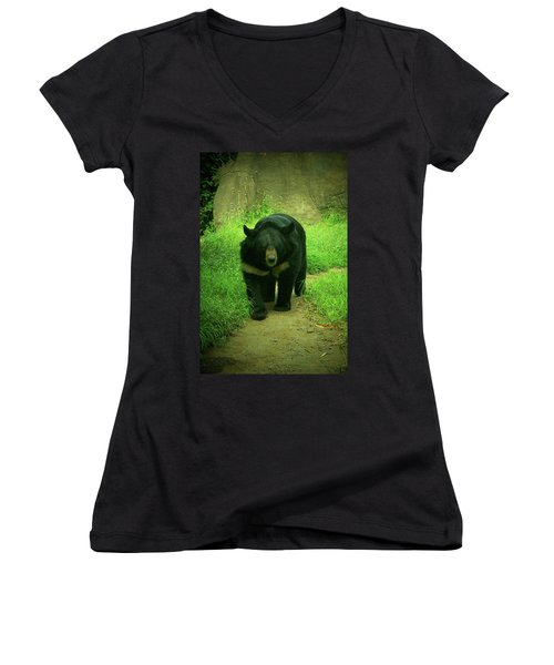 Bear On The Prowl Women's V-Neck T-Shirt