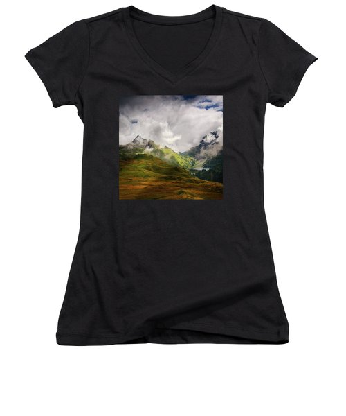 Beaute Sauvage Women's V-Neck T-Shirt