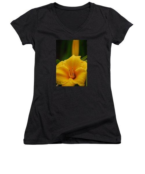 Women's V-Neck T-Shirt (Junior Cut) featuring the photograph Beautiful In Yellow by Ramona Whiteaker