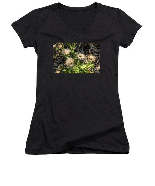 Beauty In Aging Women's V-Neck T-Shirt