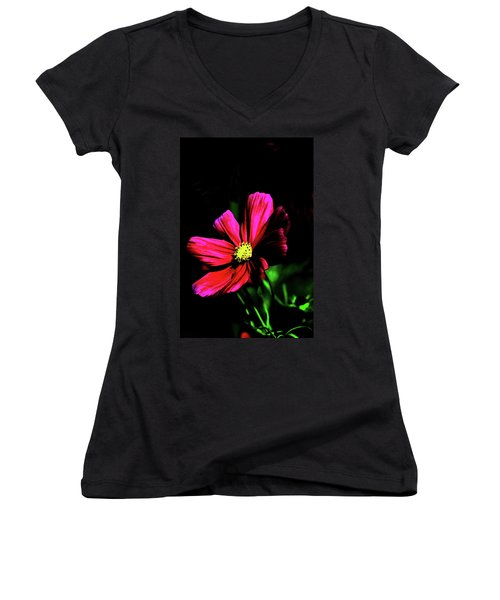 Women's V-Neck T-Shirt (Junior Cut) featuring the photograph Beauty  by Tom Prendergast