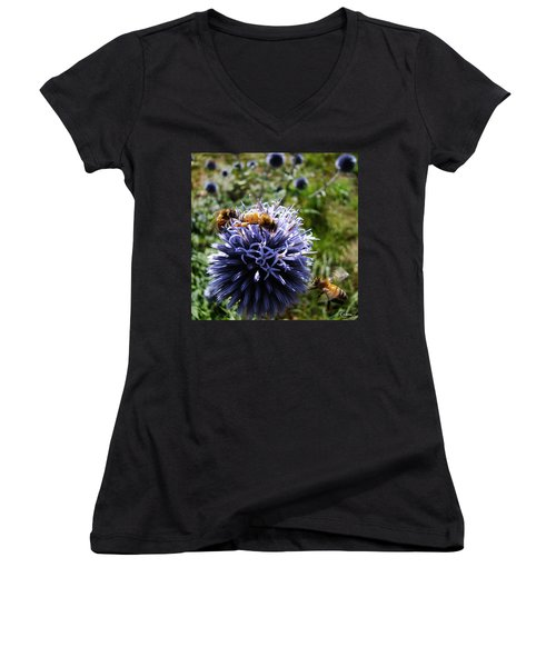 Bee Circles Women's V-Neck