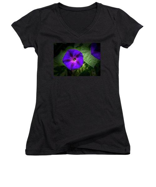Bee Inside Women's V-Neck T-Shirt