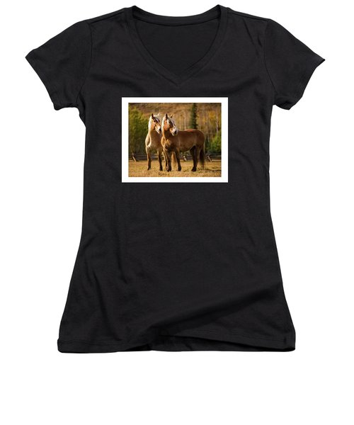 Belgian Draft Horses Women's V-Neck T-Shirt (Junior Cut) by Sharon Jones