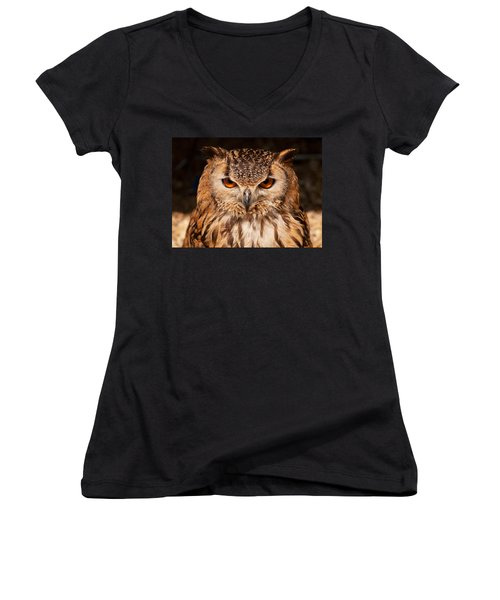 Bengal Owl Women's V-Neck T-Shirt