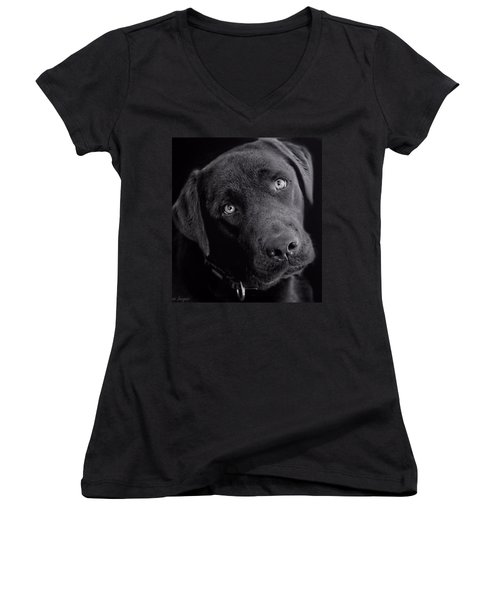 Women's V-Neck T-Shirt featuring the photograph Benji In Black And White by Wallaroo Images