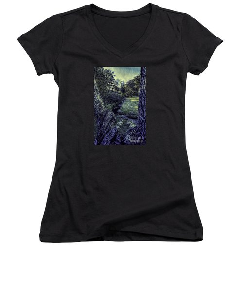 Between The Branches Women's V-Neck T-Shirt