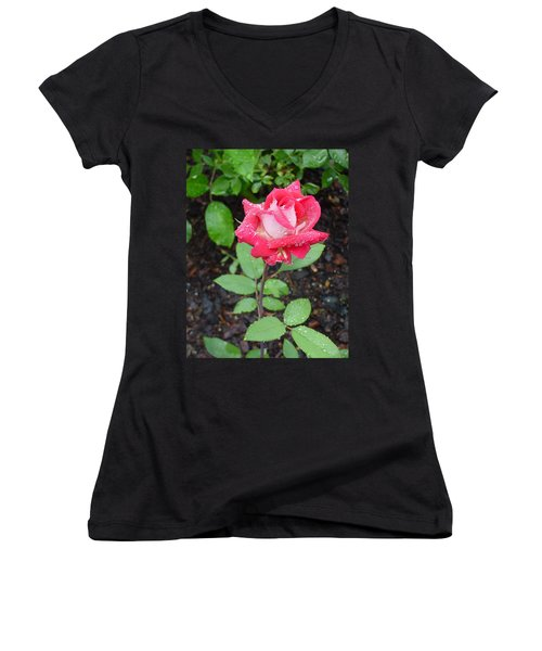 Bi-colored Rose In Rain Women's V-Neck (Athletic Fit)