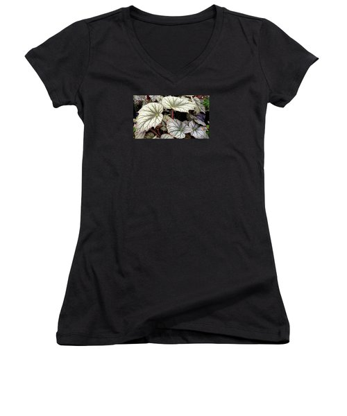 Big Begonia Leaves Women's V-Neck T-Shirt (Junior Cut)