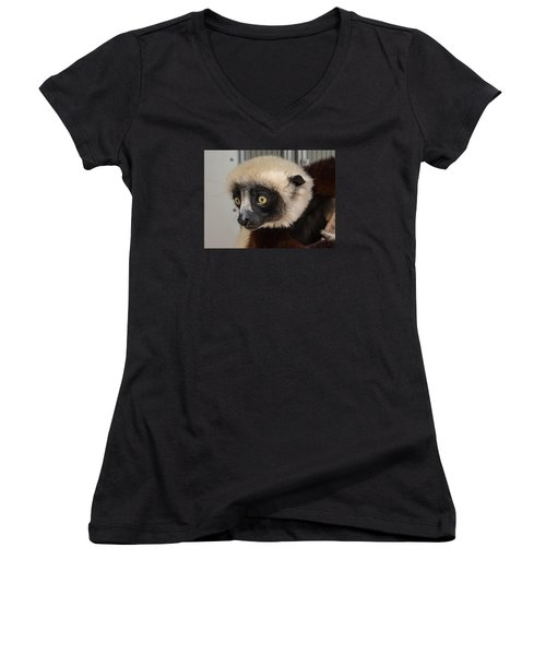 A Very Curious Sifaka Women's V-Neck