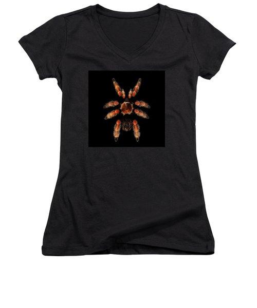 Big Spider Brachypelma Boehmei Women's V-Neck T-Shirt