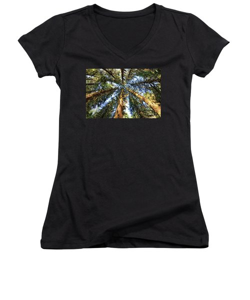 Big Trees In Olympic National Park Women's V-Neck