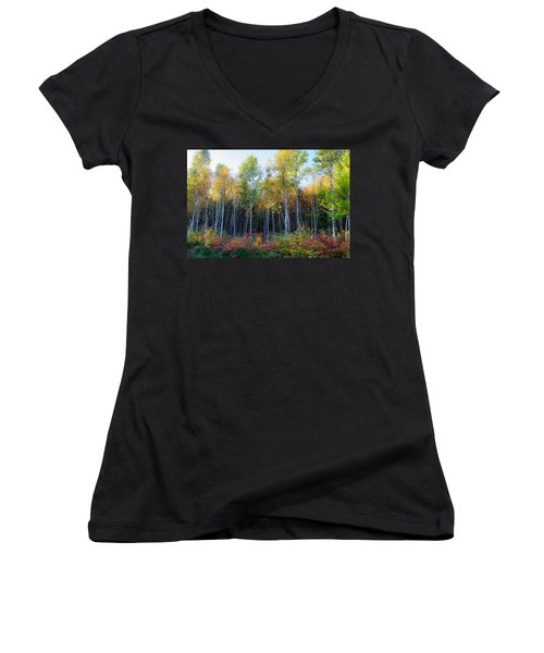 Birch Trees Turn To Gold Women's V-Neck