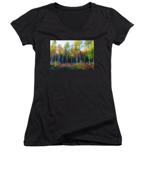 Birch Trees Turn To Gold Women's V-Neck