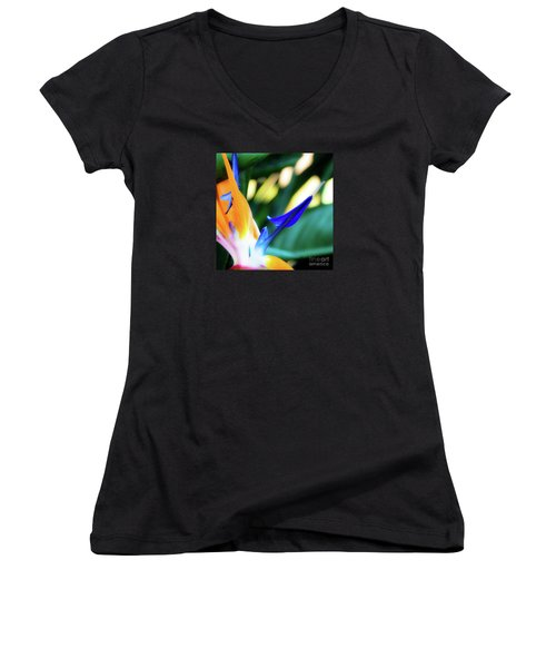 Bird Of Paradise Flower Women's V-Neck