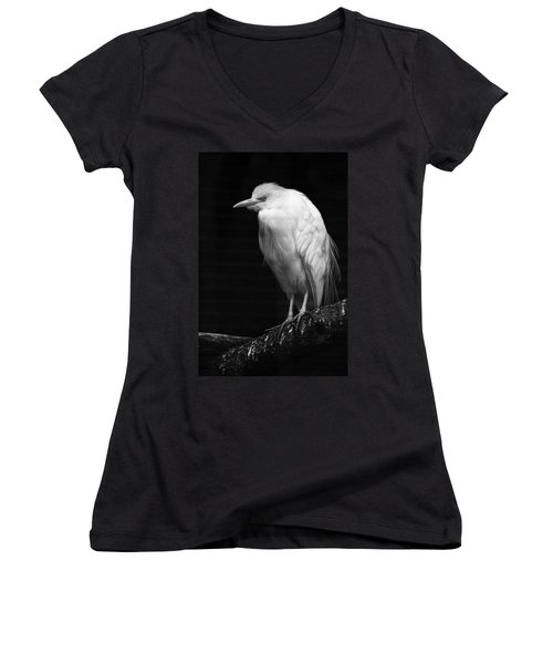 Birds Of A Feather Women's V-Neck (Athletic Fit)