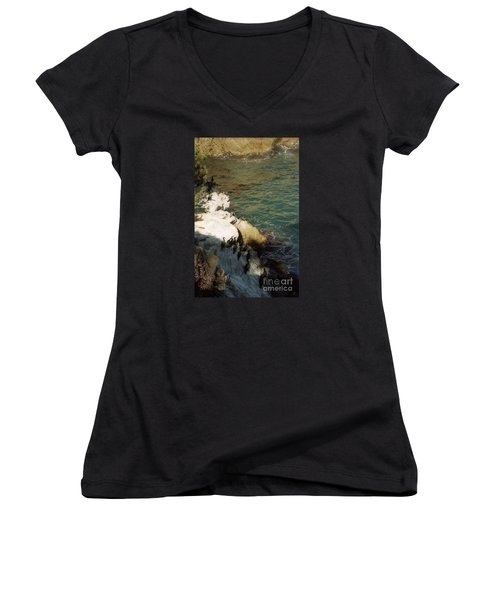 Birds On Rock Above Pacific Ocean Women's V-Neck T-Shirt