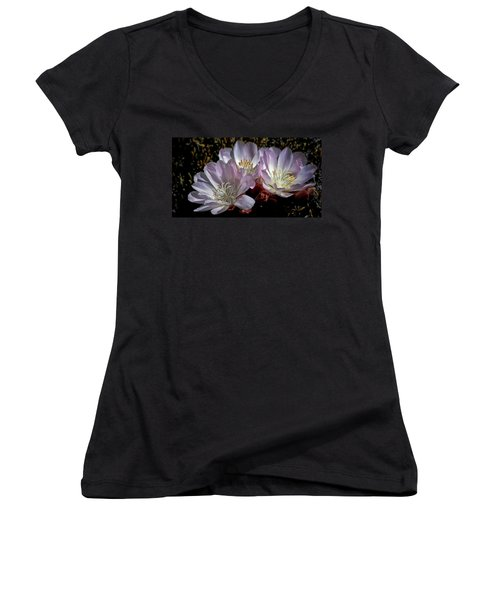 Bitterroot Women's V-Neck T-Shirt