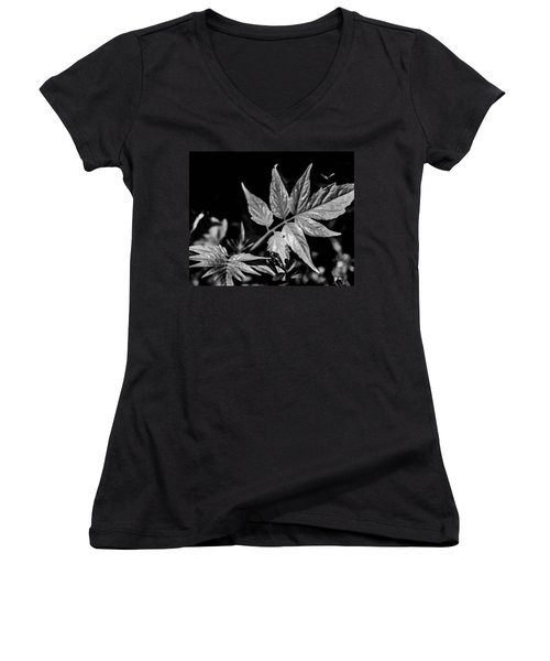 Black And White On The Forest Floor Women's V-Neck T-Shirt (Junior Cut) by Bruce Pritchett