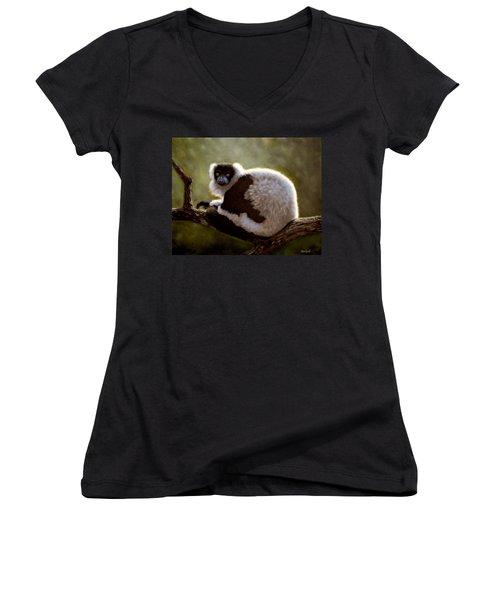 Black And White Ruffed Lemur Women's V-Neck