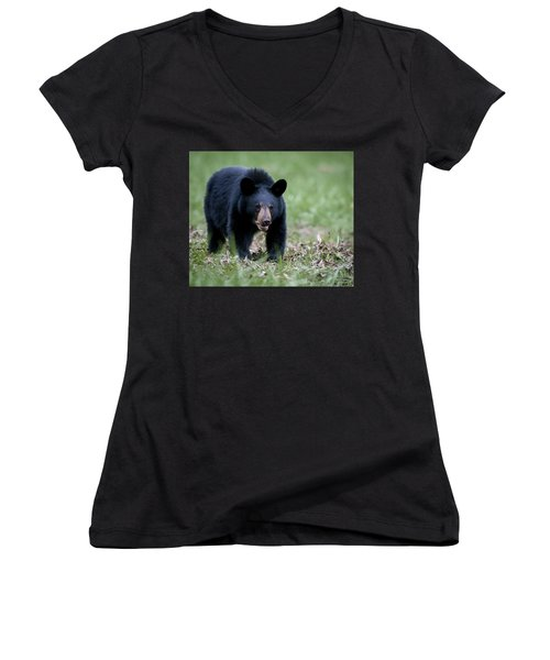 Women's V-Neck T-Shirt (Junior Cut) featuring the photograph Black Bear by Tyson and Kathy Smith