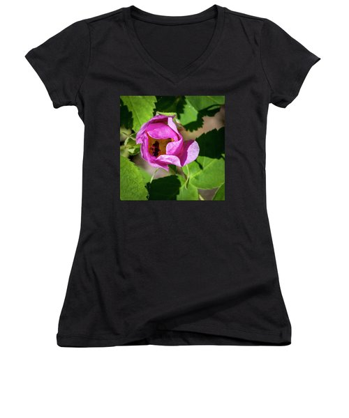 Women's V-Neck T-Shirt (Junior Cut) featuring the photograph Black Bee Collecting Pollen by Darcy Michaelchuk