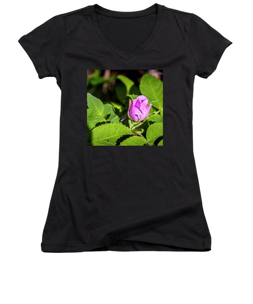 Women's V-Neck T-Shirt (Junior Cut) featuring the photograph Black Bee On Approach by Darcy Michaelchuk