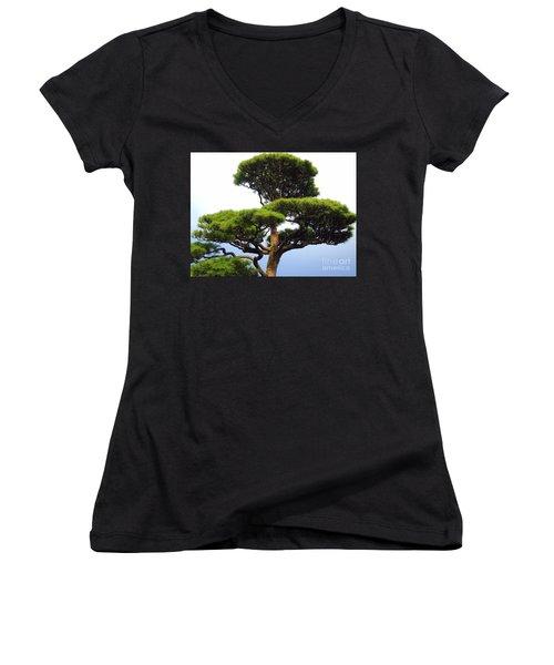 Black Pine Japan Women's V-Neck T-Shirt (Junior Cut) by Susan Lafleur