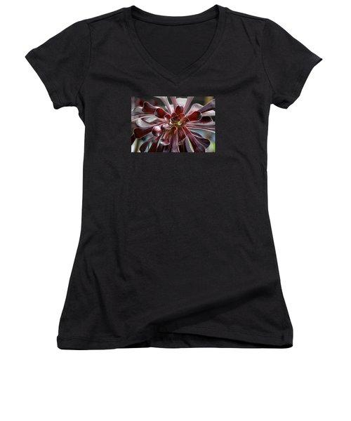 Black Rose Women's V-Neck T-Shirt (Junior Cut) by Deborah  Crew-Johnson