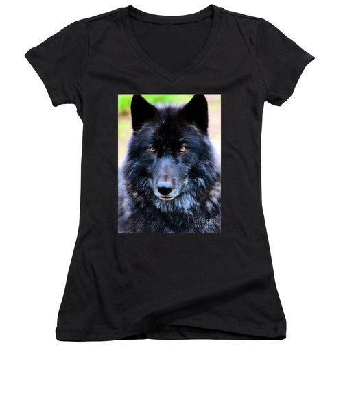 Black Wolf Women's V-Neck (Athletic Fit)