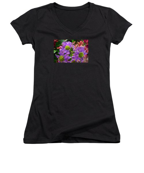 Women's V-Neck T-Shirt (Junior Cut) featuring the photograph Blooming Asters by Merton Allen
