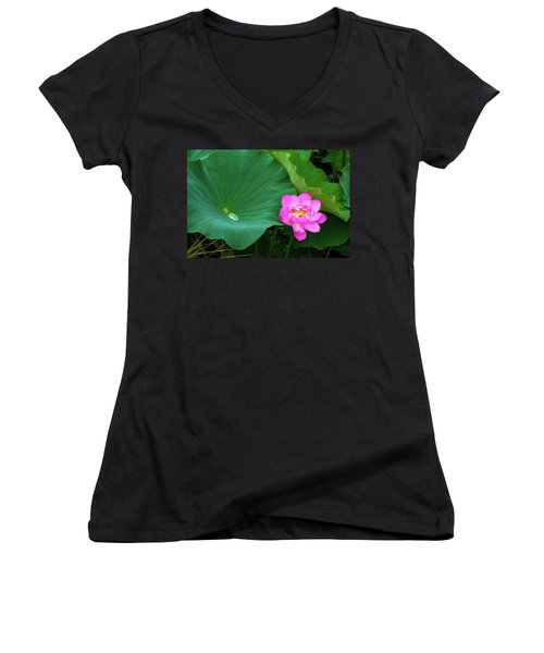 Blooming Pink And Yellow Lotus Lily Women's V-Neck