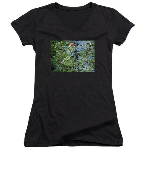 Blue Bird On Silk Women's V-Neck T-Shirt (Junior Cut) by Gary Smith
