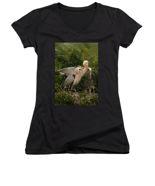 Blue Heron Family Women's V-Neck T-Shirt (Junior Cut) by Shari Jardina