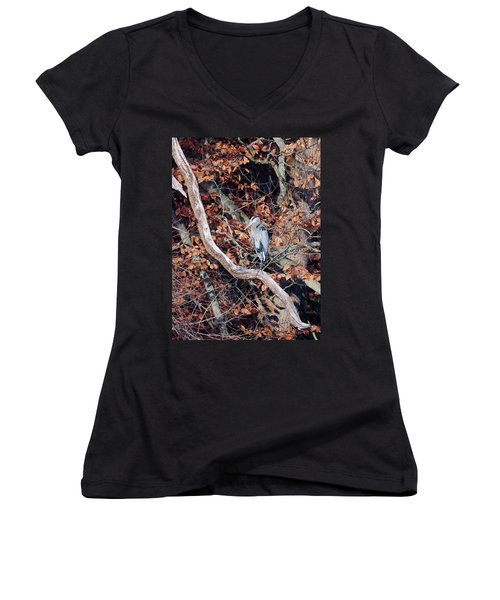 Blue Heron In Tree Women's V-Neck