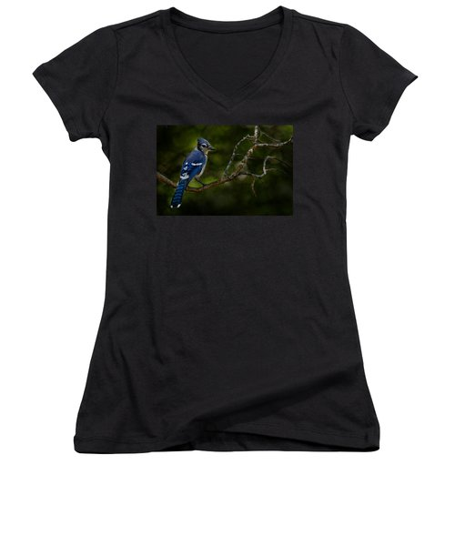 Women's V-Neck T-Shirt (Junior Cut) featuring the photograph Blue Jay In Tree by Michael Cummings