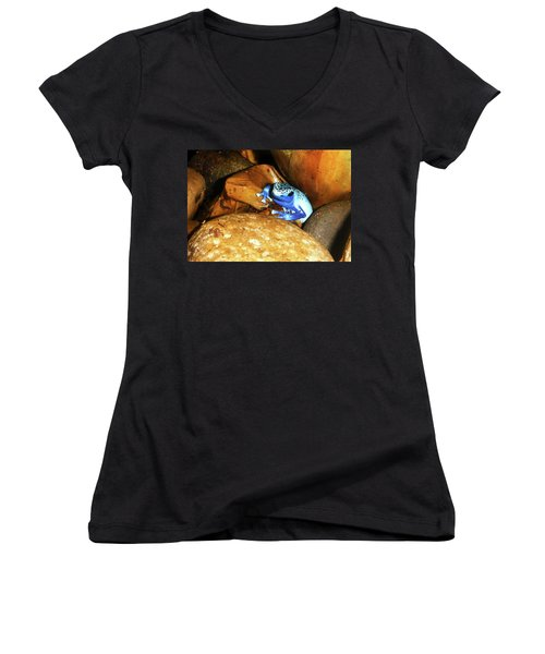 Women's V-Neck T-Shirt (Junior Cut) featuring the photograph Blue Poison Dart Frog by Anthony Jones