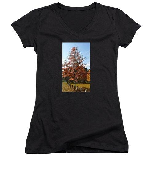 Blue Sky Women's V-Neck T-Shirt (Junior Cut) by Jana E Provenzano