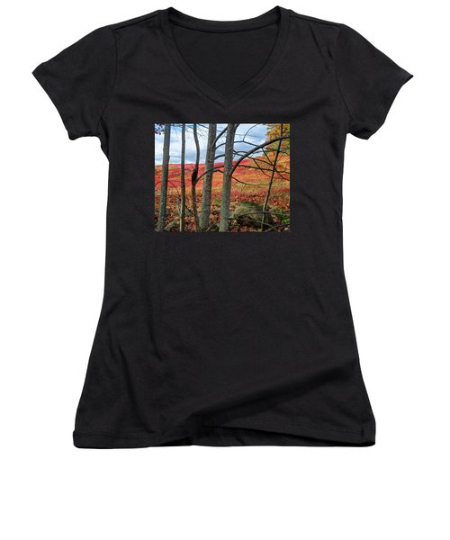 Blueberry Field Through The Wall - Cropped Women's V-Neck (Athletic Fit)