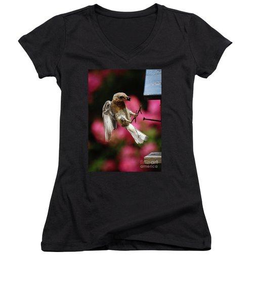 Women's V-Neck T-Shirt (Junior Cut) featuring the photograph Bluebird 0726162 by Douglas Stucky