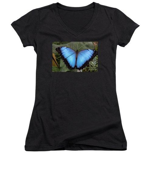 Blue Morph Women's V-Neck T-Shirt