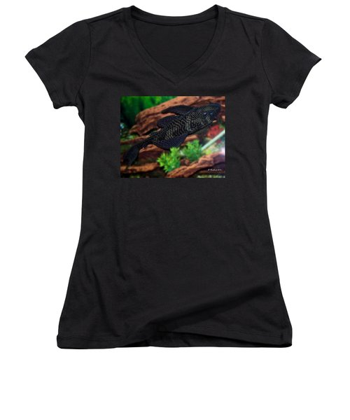 Women's V-Neck T-Shirt (Junior Cut) featuring the photograph Bozo by Betty Northcutt