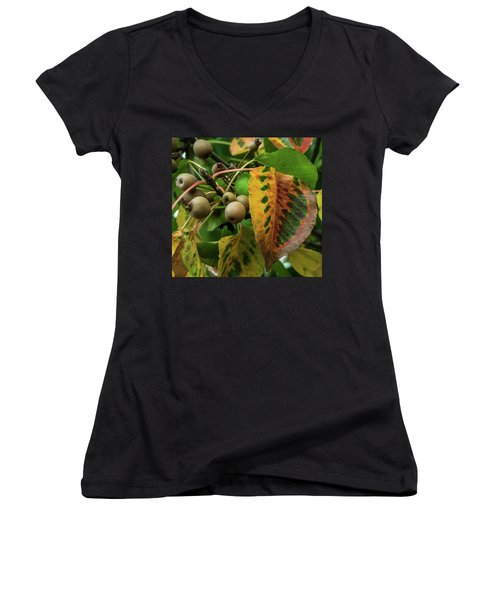 Bradford Pear Fruit And Leaves Women's V-Neck (Athletic Fit)