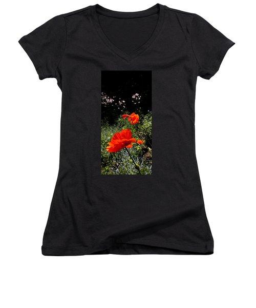 Bright Orange Women's V-Neck T-Shirt (Junior Cut) by Renate Nadi Wesley