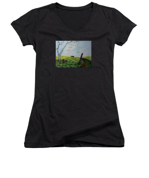 Broken Fence Women's V-Neck T-Shirt