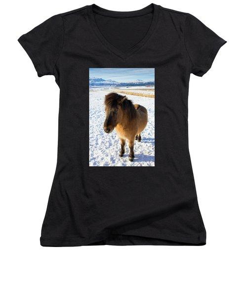 Brown Icelandic Horse In Winter In Iceland Women's V-Neck T-Shirt (Junior Cut) by Matthias Hauser