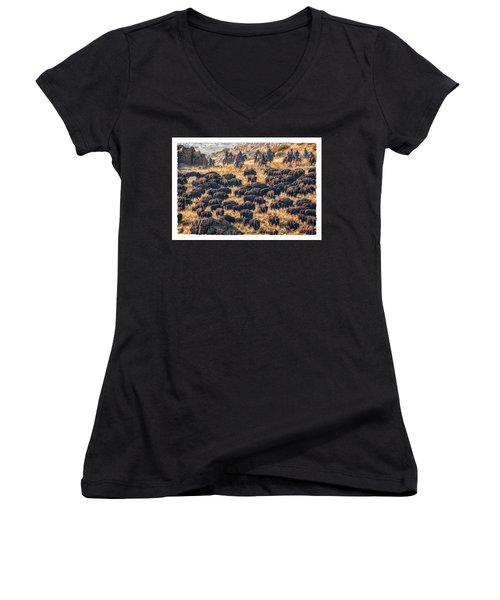Buffalo Roundup Women's V-Neck T-Shirt (Junior Cut) by Kristal Kraft