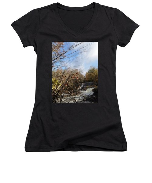 Bulls Bridge Women's V-Neck T-Shirt