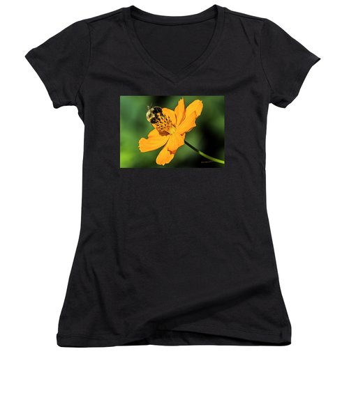 Bumble Bee And Flower Women's V-Neck T-Shirt
