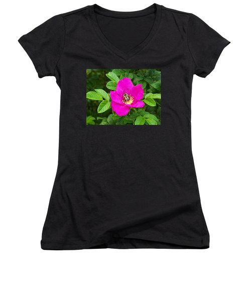 Bumble Bee On A Wild Rose Women's V-Neck T-Shirt (Junior Cut) by Joy Nichols